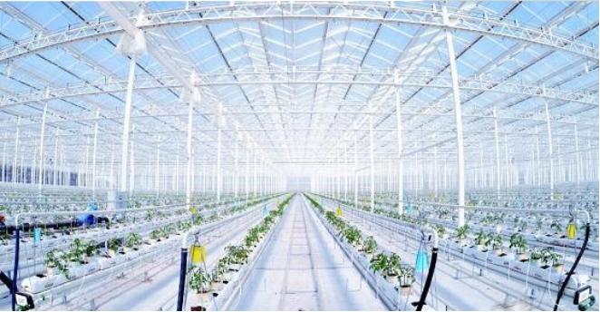 农业物联网.png